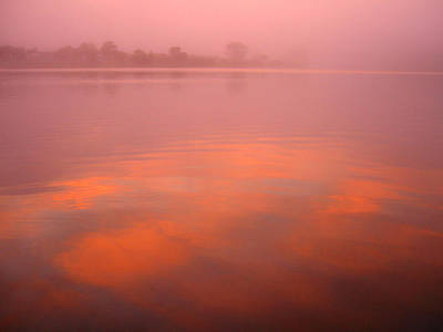 Photograph - Pink Dawn by Alistair Lyne
