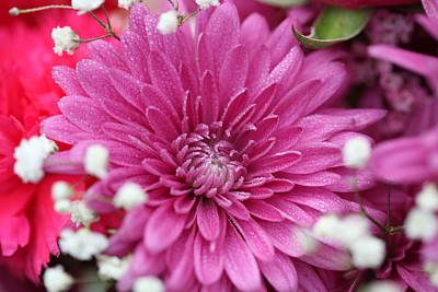 Photograph - Pink Flower With Raindrops by Sheila Kay McIntyre