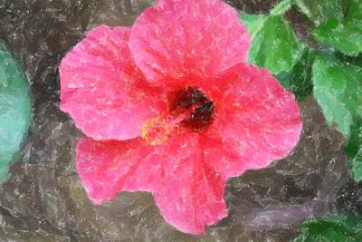 Art Print featuring the photograph Pink Hibiscus by Donna  Smith