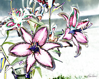 Photograph - Pink Lilies by Diana Haronis