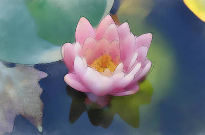 Digital Art - Pink Lotus by Brandon Bourdages