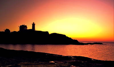 Photograph - Pink Nubble by Emily Stauring