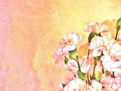 Blend Photograph - Pink On Yellow by Marsha Heiken