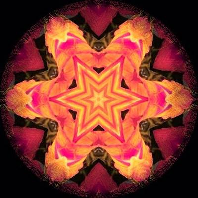 Fractal Wall Art - Photograph - #pink #orange And #red #fractal #art On by Pixie Copley