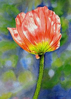 Painting - Pink Poppy by Debra Spinks