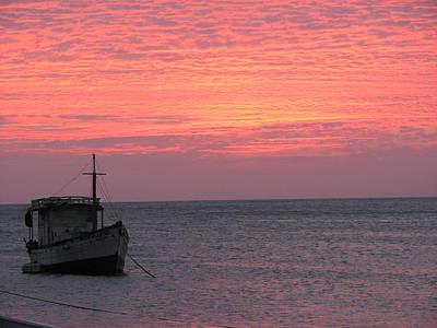Photograph - Pink Sky by Gal Moran