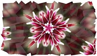 Pink Snowflake  Art Print
