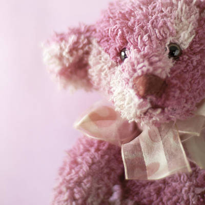 Photograph - Pink Teddy With Bow Still Life by Ethiriel Photography