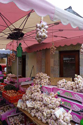 Photograph - Pink Umbrella And Garlic by Carla Parris
