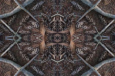 Pinus Strobus Art Print by Ed Kelley