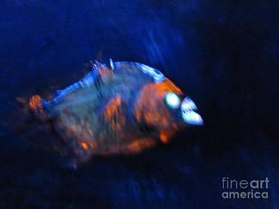 Piranha Painting - Piranha 3d  by Robert Del-Rose