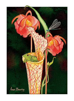Art Print featuring the painting Pitcher Plant With Blooms by Anne Beverley-Stamps
