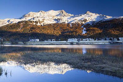 Piz Corvatsch In Bernina Range With Sils Im Engadin Reflecting In Lake Sils, Engadin, Switzerland Art Print