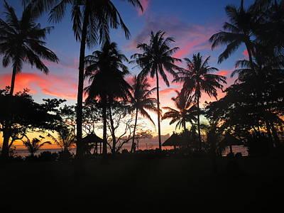Plam Tree Sunset Original
