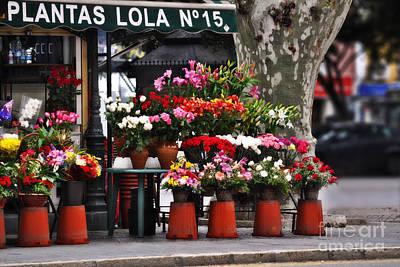 Awnings Digital Art - Plantas Lola Seville by Mary Machare