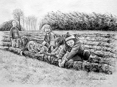 Spuds Drawing - Planting Spuds by Colleen Quinn