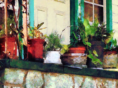 Photograph - Plants On Porch by Susan Savad