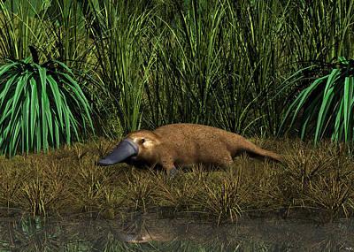 Digital Art - Platypus Creek by Walter Colvin