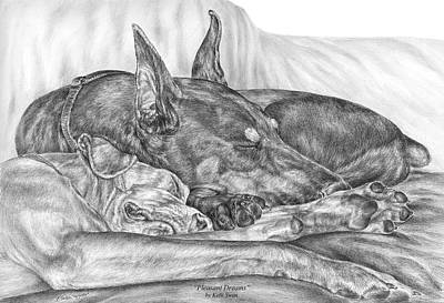 Pinscher Drawing - Pleasant Dreams - Doberman Pinscher Dog Art Print by Kelli Swan