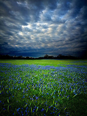 Pleasant Dreams Art Print by Phil Koch