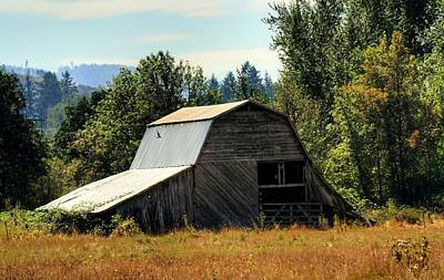 Photograph - Pleasant Hill Barn by Chris Anderson