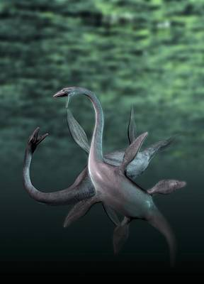 The Natural World Digital Art - Plesiosaurs Fighting, Artwork by Victor Habbick Visions