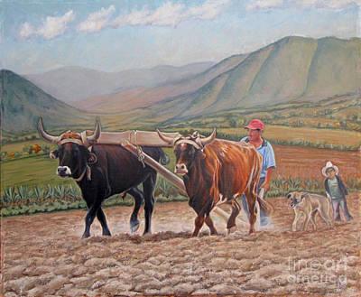 Ploughing In Ocotlan Art Print by Judith Zur