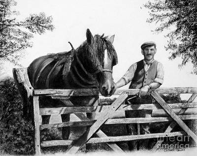 Sunny Day Drawing - Ploughman by Colleen Quinn