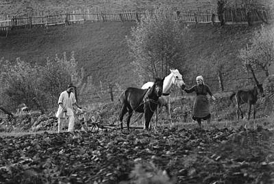 Photograph - Plowing With Horses by Emanuel Tanjala