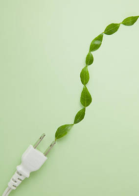 Y120831 Photograph - Plug And Leaves by sozaijiten/Datacraft