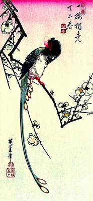 Magpie Photograph - Plum Blossoms And Long-tailed Magpie 1844 by Padre Art