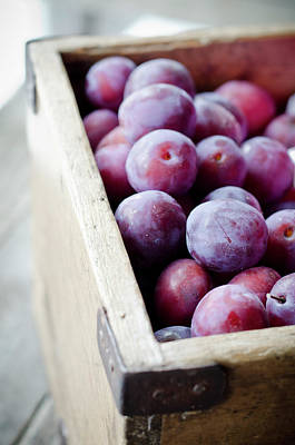 Plums Art Print by Marju Randmer