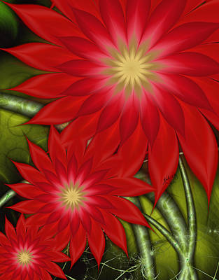 Digital Art - Poinsettia by Karla White