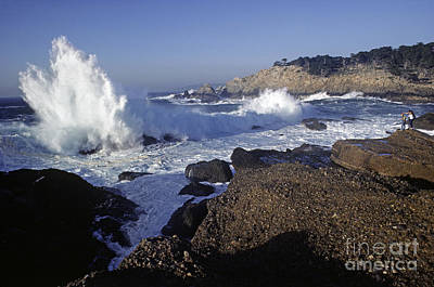 Photograph - Point-lobos-8-19 by Craig Lovell