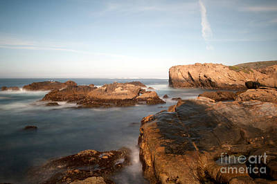 Point Lobos Number Three Original by Catherine Lau
