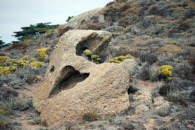Point Lobos Smiley Face Art Print
