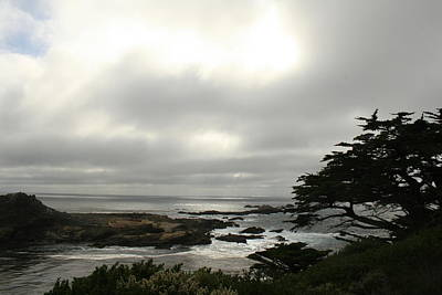 Point Lobos View Art Print by Suzanne Lorenz