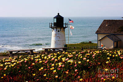 Photograph - Point Montara Lighthouse Vista by Carol Groenen