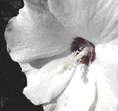 Althea Digital Art - Pointillized Althea Flower by Renee Trenholm