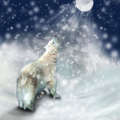 Photograph - Polar Bear Gazing At The Moon by Ethiriel  Photography