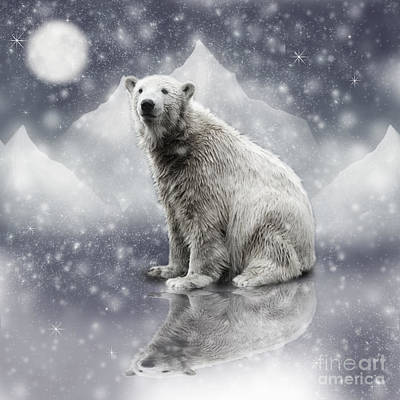Photograph - Polar Bear Sitting Under The Moon by Ethiriel  Photography