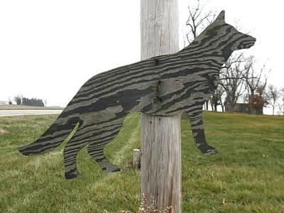 Photograph - Pole Dog by Todd Sherlock