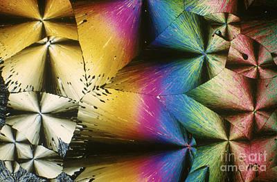 Polymer Photograph - Polypropylene by Michael W. Davidson