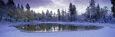 Pond And Fresh Snowfall, Near 70 Mile Print by David Nunuk