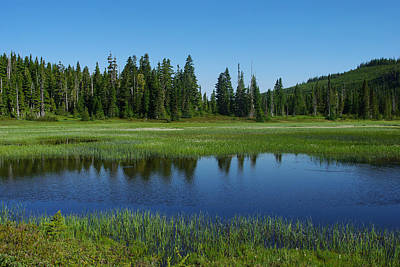 Photograph - Pond At Paradise Meadows by Marilyn Wilson