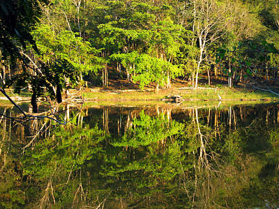 Photograph - Pond Reflection Guatemala by Kurt Van Wagner