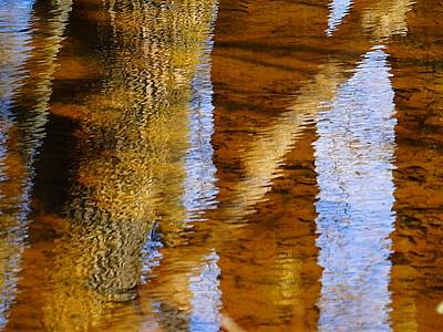 Photograph - Pond Reflections by Beth Akerman