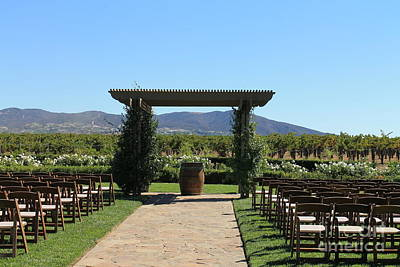 Photograph - Ponte Winery by Pamela Walrath