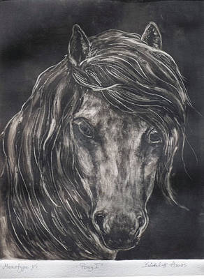 Painting - Pony I by Barbel Amos