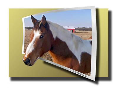Pony Posing Art Print by Brian Wallace